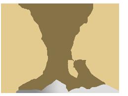 Упражняване на родителски права. Признаване и изпълнение на територията на Република България на съдебно решение, относно родителската отговорност, постановено в друга държава – членка на ЕС
